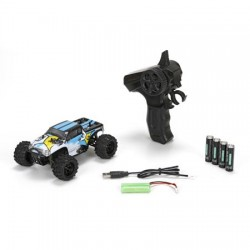 ECX Ruckus 1/24 4WD Monster Truck Noir/Blanc