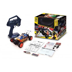 Carisma MICRO BUGGY 4WD BRUSHLESS GT24B RTR