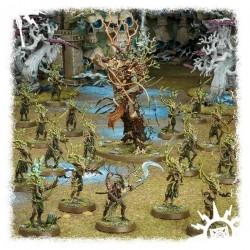 Warhammer Age of Sigmar Start Collecting! Sylvaneth 70-92